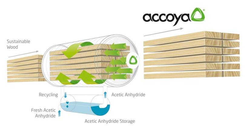 Accoya Blog IMAGE
